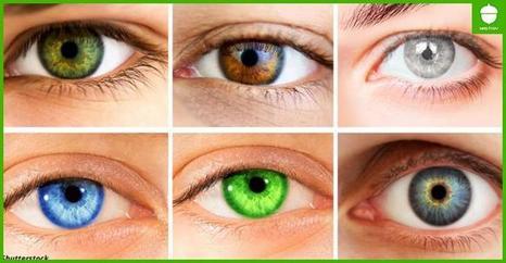 Глаза   окна вашей души! Что говорит о ней их цвет?