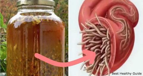 Вот самый мощный природный антибиотик в мире