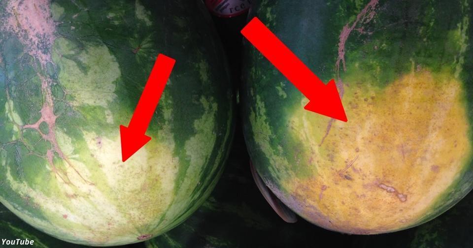 5 секретов, которые помогут вам выбрать самый сладкий арбуз
