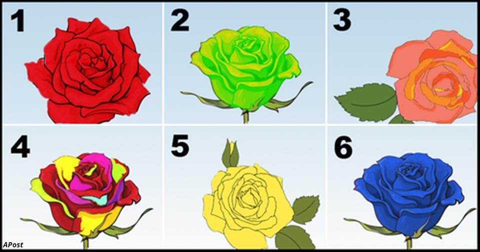 Выберите самую красивую розу   и мы расскажем главный секрет вашей личности