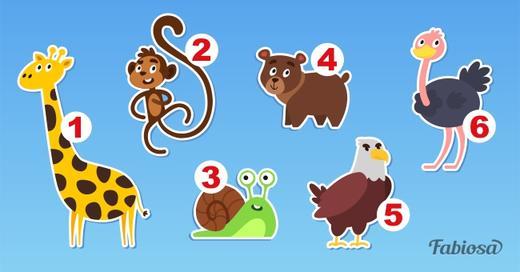 Какое животное симпатизирует вам больше всех? Ваш выбор может рассказать о вас кое что интересное!