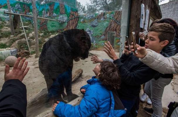 История глазами фотографа который, показал как живется животным в зоопарке!