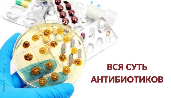 Суть антибиотиков – все «за» и «против»
