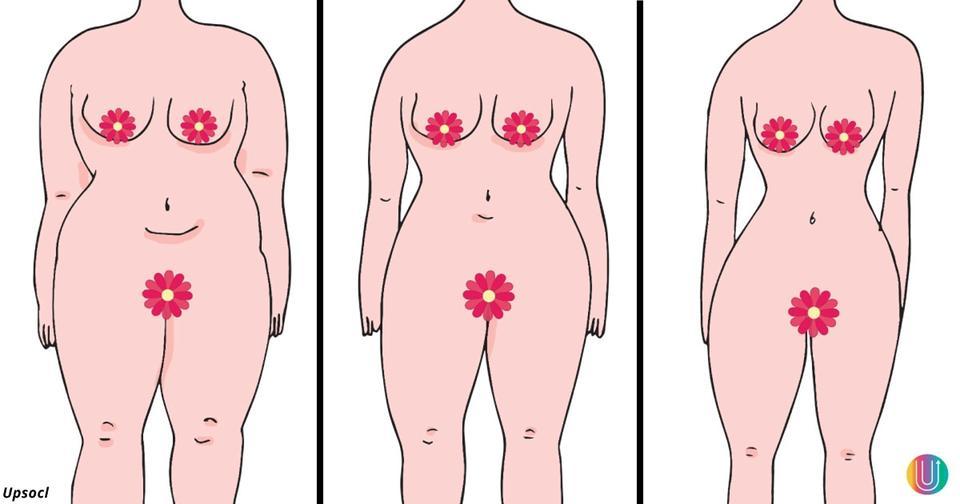 Чтобы похудеть на 12 кило за месяц, начните эту бразильскую диету. Ее секрет — в правильных белках