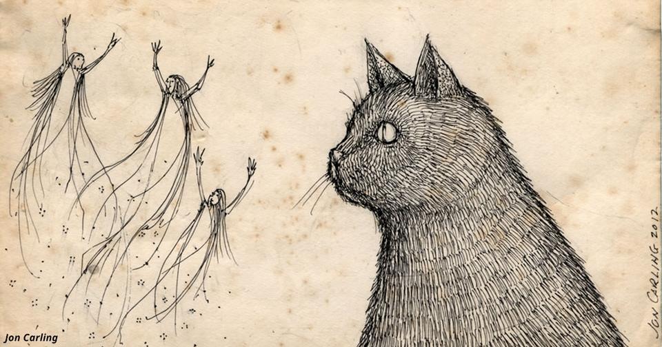 Могут ли кошки и собаки видеть духов? Вполне возможно, говорят ученые