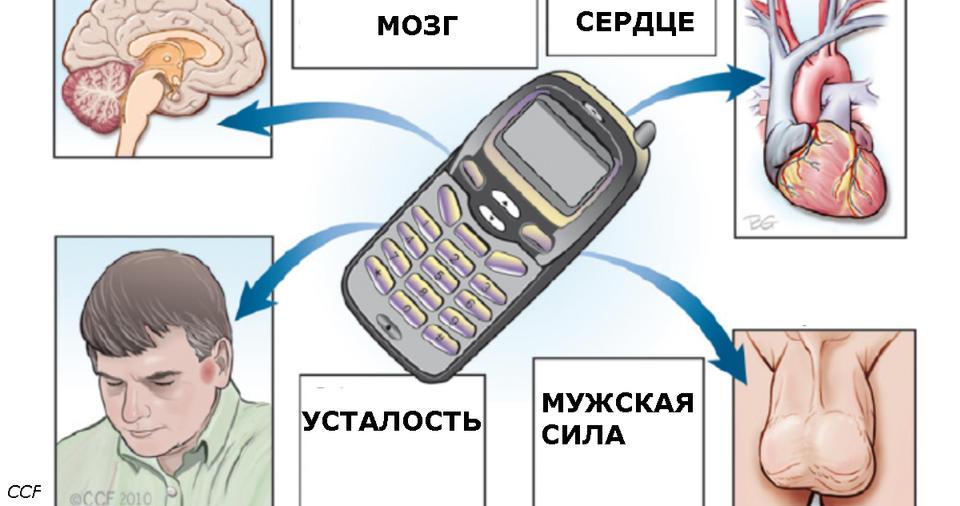 Вот все мифы и факты о том, как телефон влияет на ваше здоровье