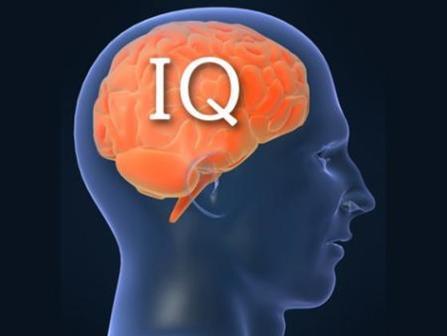 Только 3 женщины из 100 проходят этот сложный IQ тест!