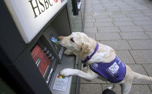13 лучших способов защитить себя, когда снимаешь деньги у банкомата