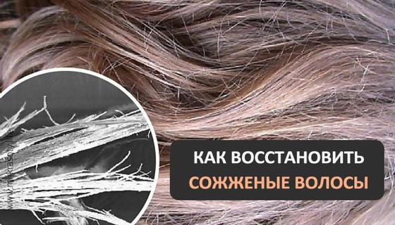 Восстановление сожженных волос в три этапа