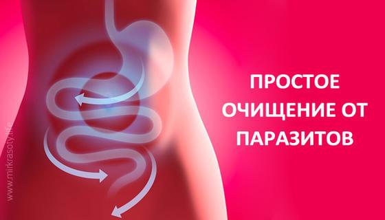 Чистка кишечника перед сексем