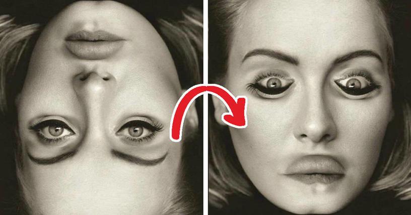 15 изображений, которые легко обманут ваш мозг