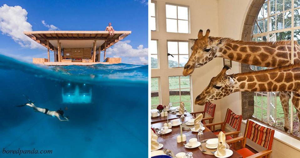 Если бы у меня было много денег, я бы поехала в 1 из этих 27 отелей! Ничего ярче не видела!