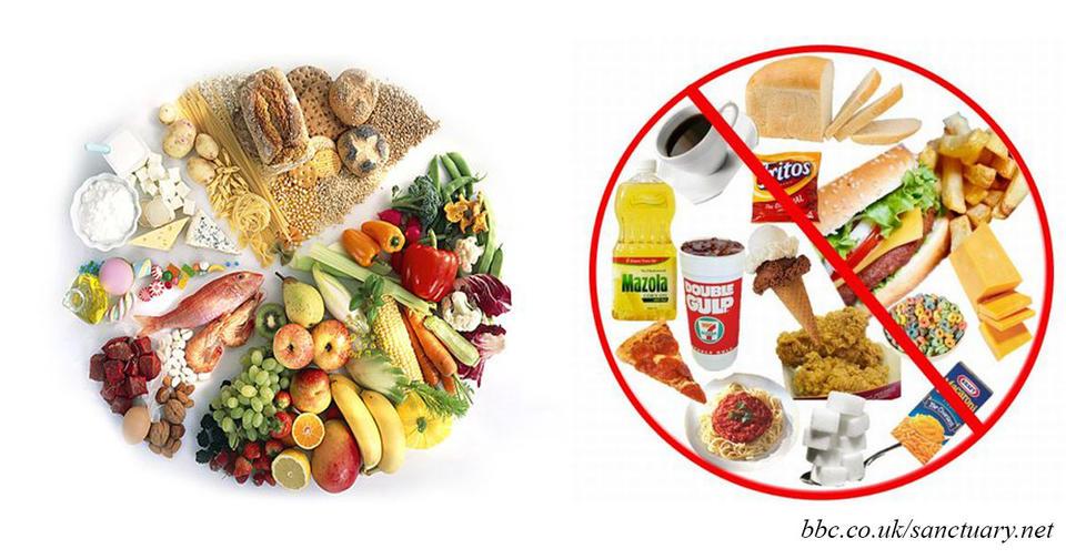 Картинки по запросу полезные и вредные продукты