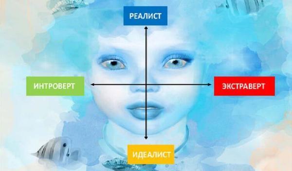 Есть 4 типа человеческой личности. Какого   ваша?
