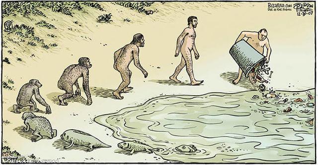 15 хлестких карикатур о теории эволюции, в которых вы узнаете себя