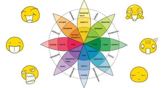 Знаменитое Колесо Эмоций точно определит, где ваше место в обществе!