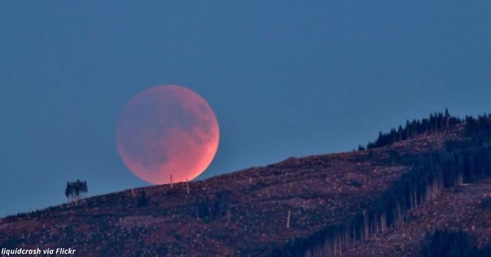 Скоро будет первое за 150 лет затмение «голубой Луны». Вот как не упустить свой шанс