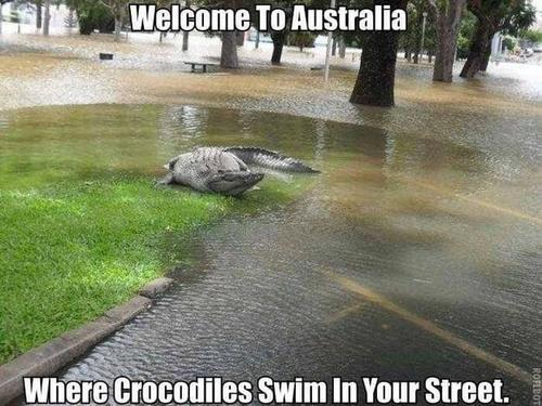 36 фото, доказывающих, что Австралия - страна для сумасшедших людей
