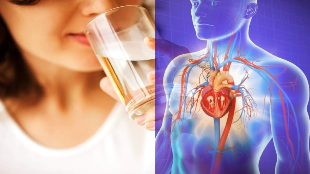 Стакан воды утром на голодный желудок - лучший способ ″взбодрить″ иммунную систему!