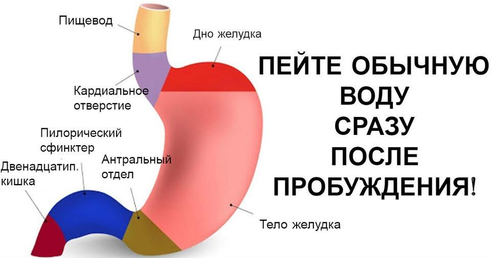 Стакан воды утром на голодный желудок   лучший способ ″взбодрить″ иммунную систему!
