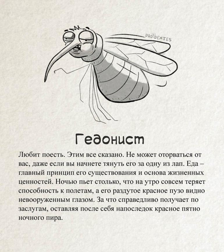 Художник создал очень остроумную и жизненную классификацию комаров, с которыми сталкивался каждый. Теперь их можно встретить во всеоружии