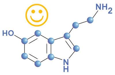 Серотонин - гормон радости и счастья. Вот 10 признаков, что у вас его дефицит И способы его поднять.