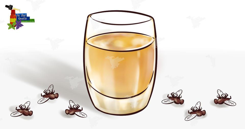 С этим средством вы забудете о мухах, комарах и тараканах в доме максимум через 2 часа