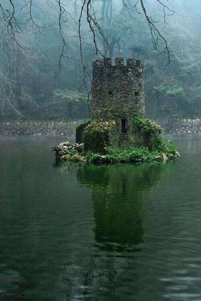 40 фото о том, что станет с нашей цивилизацией, как только люди исчезнут Магия природы.