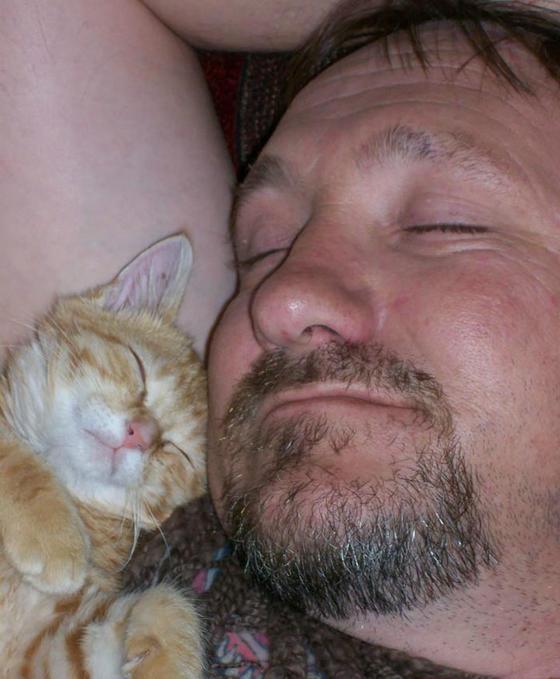 30 мужчин, которые говорили, что не хотят ″никаких чертовых котов″ ″Уберите кота с моего живота!″
