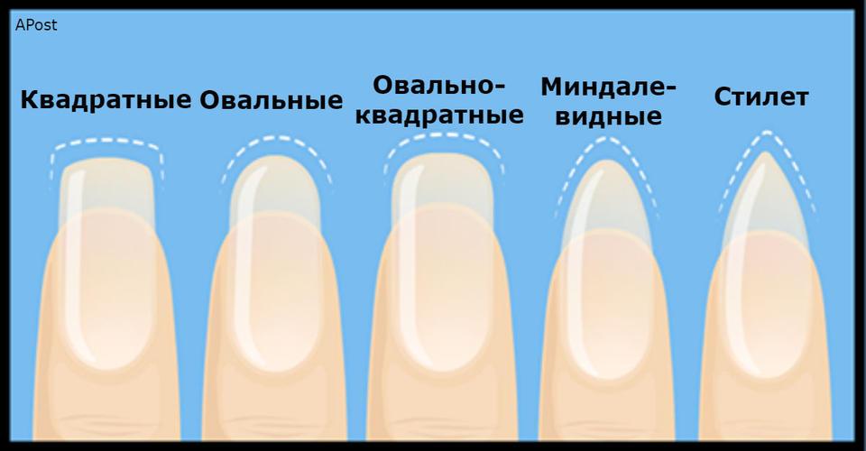Что может рассказать о вашей личности форма ногтей? Вот что! Очень любопытный тест.