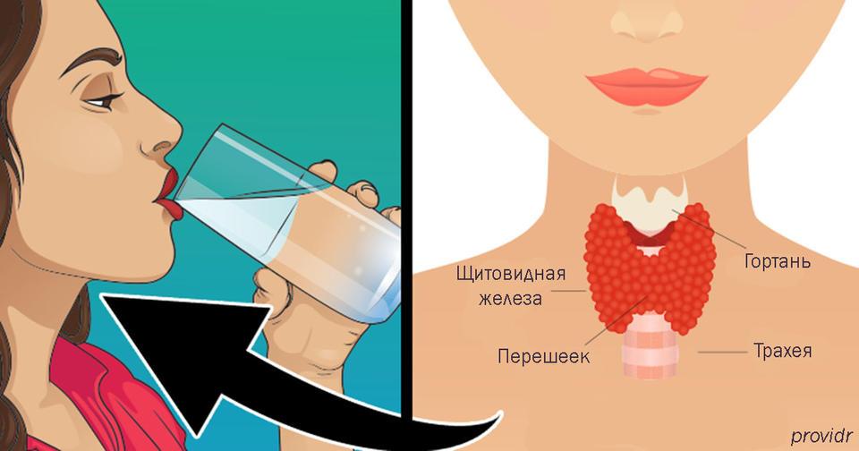 Вот как решить все проблемы со щитовидной железой И почему это так важно...