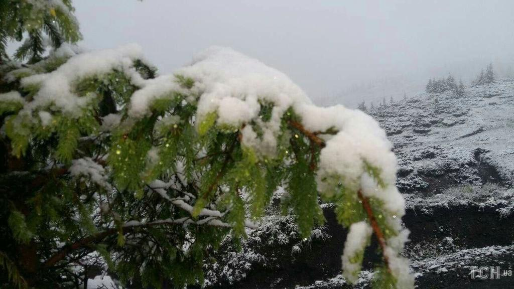В Карпатах выпал снег. И его ооочень много! 23 июня - и тут на тебе...