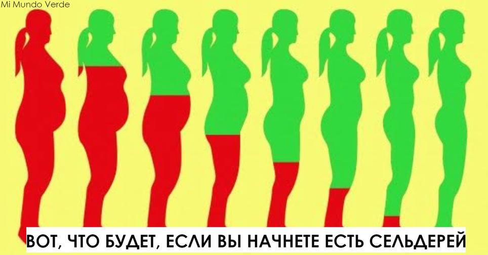 Вот что будет с вашим телом, если вы начнете есть сельдерей хотя бы неделю Ого, не знала!