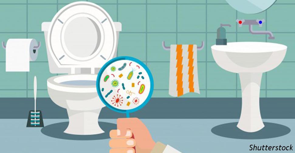 Закрывайте крышку перед тем, как сливать в туалете! Вот почему это так важно Делайте это каждый раз.