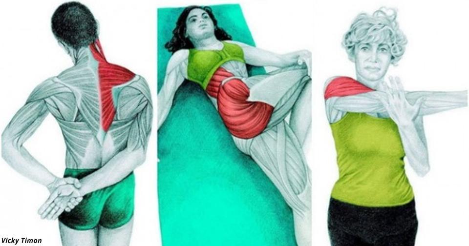 34 картинки о том, какие именно мышцы вы растягиваете во время разных упражнений Выбирайте то, что вам надо.