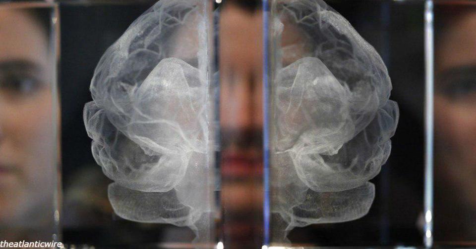 Нищета действительно меняет мозги! Вот все эффекты, о которых мы знаем Это замкнутый круг.