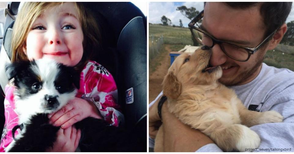 27 фото людей, которые наконец то осуществили свою мечту и приютили собаку Вот это эмоции!