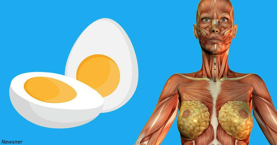 9 вещей, которые произойдут с вашим телом, если стать есть по 2 яйца на завтрак Шикарная привычка.