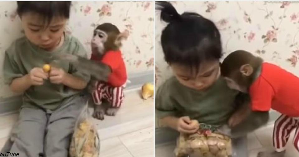 Видео секс дядя и маленькая девочка