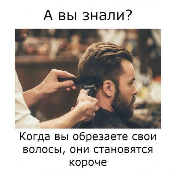 25 картинок, которые заставят вас ценить работу парикмахера Не думайте, что все так просто.