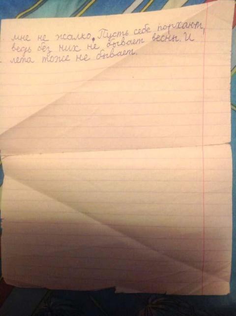 Школьник написал сочинение по басне «Стрекоза и Муравей». И это нечто!! Литературный критик от Бога.