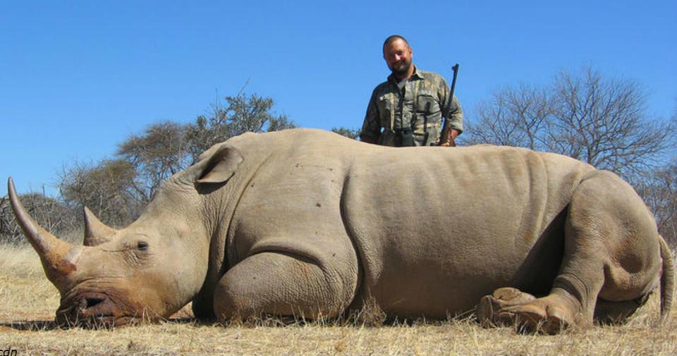 Через 20 лет не останется ни одного носорога. Они просто исчезнут! Спасите носорогов!