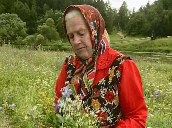 Есть 3 ″сорняка″, которые помогают восстановить хрящи и кости. Вот они И не надо в аптеку!