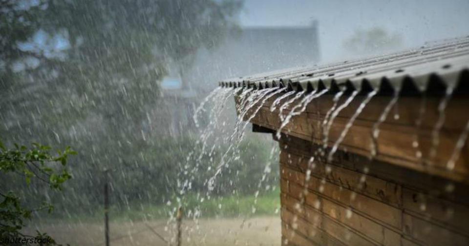 Бактерии и химикаты в дождевой воде убивают людей   и никто об этом не говорит! Старайтесь в дождь по улицам не гулять.