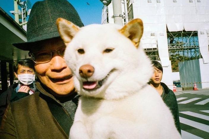 33 фото из повседневной жизни Японии, доказывающих, что это безумная страна Красота в обыденности.