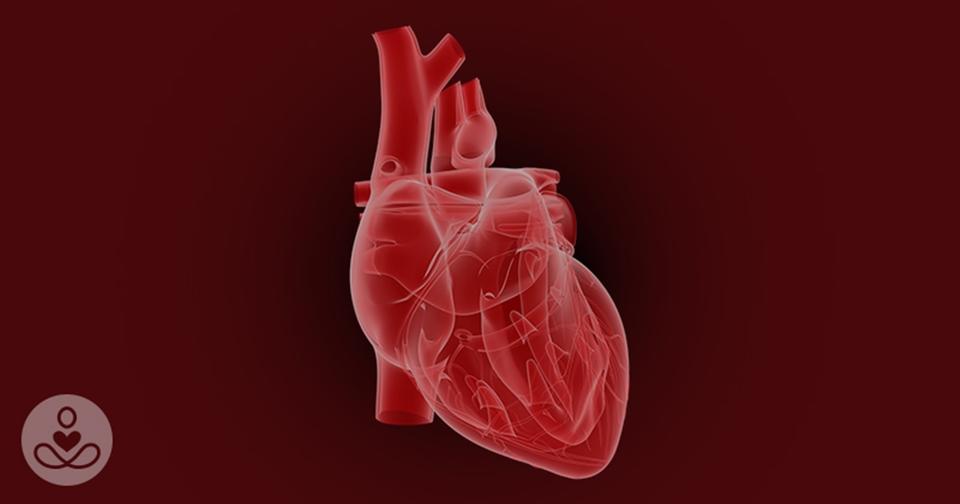 Вы действительно можете умереть от «разбитого» сердца. Объясняет кардиолог Это не только фигура речи.