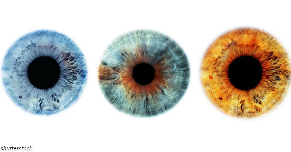 Вот что может рассказать о вас цвет ваших глаз Глаза не только зеркало эмоций, они   зеркало души