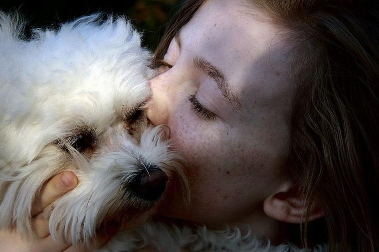 Врачи подтверждают: потерять собаку – это как потерять любимого человека А вы это чувствовали?