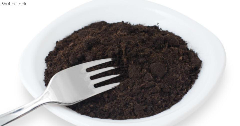 Будет ли грязь новой панацеей для худеющих? Ложка почвы выводит жир! Любопытное средство.