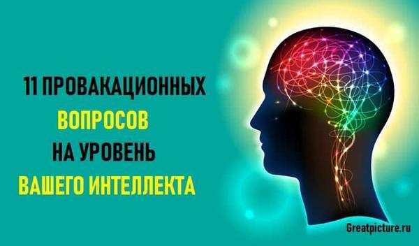 11 провокационных вопросов, на уровень вашего интеллекта